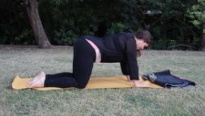 yoga for pcos cat cow pose 1