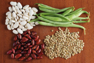 Should soy be a part of your pcos diet soy