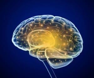 PCOS Brain